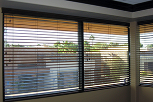 Wise Windows - Tinting and Blinds