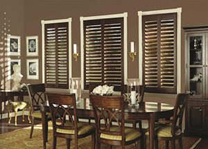Wise Windows Tinting, Blinds and Shades