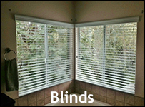 Wise Windows - Tint and Blinds