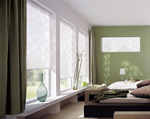 Wise Windows Tinting and Blinds